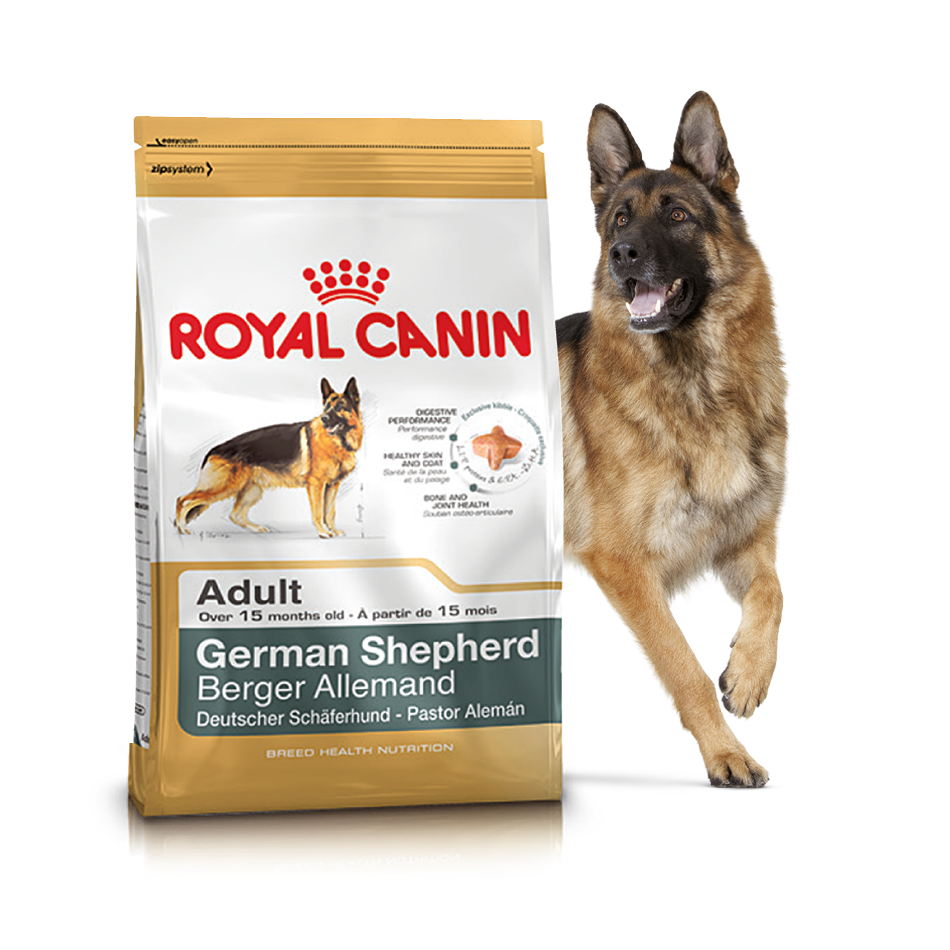 Сухий корм Royal Canin German Shepherd Adult для дорослих собак